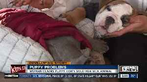 Dog owner raises concerns over sick puppy from local pet store [Video]