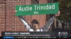 Bronx Street Renamed In Honor Of Navy Veteran [Video]