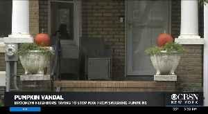 Pumpkin Vandal On The Loose [Video]