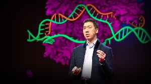News video: Can we cure genetic diseases by rewriting DNA? | David R. Liu