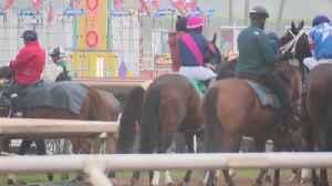 News video: 34th Horse Dies at Santa Anita Park in Less Than a Year