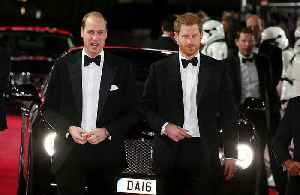 Prince Harry: Prince William and I have good days and bad days [Video]