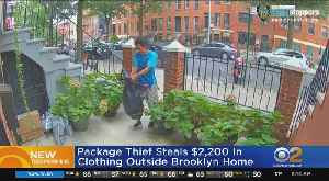 Porch Pirate Caught On Camera [Video]