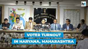 Assembly polls: Haryana records 65% voter turnout, 60.5% in Maharashtra [Video]