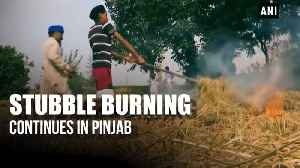 Stubble burning continues in Punjab despite government ban [Video]