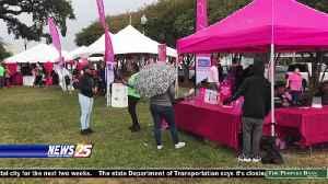 No Damper on  Strides Against Breast Cancer Fundraiser [Video]