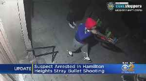 Suspect Arrrested In Hamilton Heights Stray Bullet Shooting [Video]
