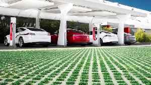 Jim Cramer on Tesla's Earnings [Video]