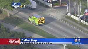 One Injured In At Southland Mall Shooting [Video]