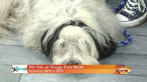 News video: Have A 'Doggy Date Night'