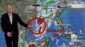 Tropical Storm Olga forms in Gulf of Mexico, no threat to Florida [Video]