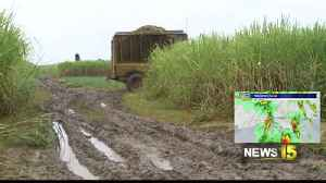 Tropical Storm Olga Brings Challenges To Farmers [Video]