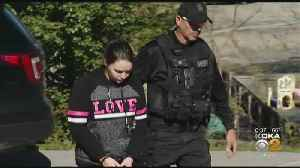 3 Facing Charges After Dog Found Tied Up, Shot Dead On Westmoreland Co. Railroad Tracks [Video]