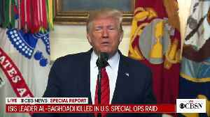 Pentagon Officials Say They Didn't Have Same Details That Trump Shared About Al-Baghdadi Raid [Video]
