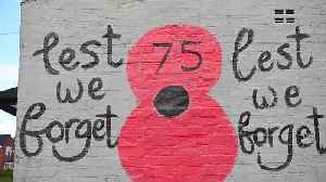 Patriot pub-goers decorate outside of boozer with giant poppies in time for Remembrance Day [Video]