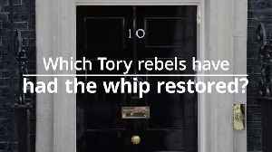 Which rebel Tory MPs have had the whip restored? [Video]