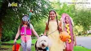 Halloween: Its  Origin and Traditions [Video]