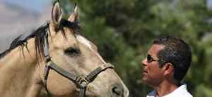 Vegas Stronger Champion: Helping to heal through horse therapy [Video]