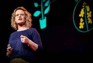 The next software revolution: programming biological cells | Sara-Jane Dunn [Video]