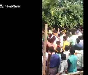 Chaotic scenes in India as bull charges crowd carrying local politician [Video]