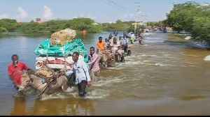 More than 270,000 displaced by deadly Somalia floods [Video]