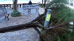 Storm Amelie pummels France with high winds and heavy rains [Video]