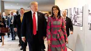 News video: Nikki Haley Says In New Book: 'Trump And I Understood Each Other'