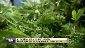 Marijuana proposals on the ballot in 4 metro Detroit communities [Video]
