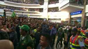 Fans greet World Cup-winning Springboks [Video]