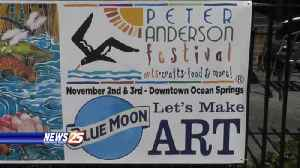 41st Peter Anderson Arts and Crafts Festival in Ocean Springs [Video]