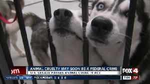 Senate passes new animal cruelty act [Video]
