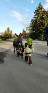 Kid Dressed As Famous Animated Character Walks With Donkey [Video]