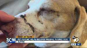 Pet psychic helps recover missing, injured dog in Alpine [Video]
