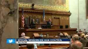 Wisconsin Senate punts on gun control [Video]