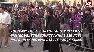 News video: Justin Theroux covers dog adoption fees