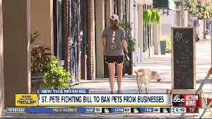 St. Petersburg leaders take stand against Florida bill that would ban pets from certain areas [Video]
