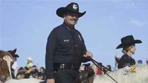 A Look At Chicago's Interim Top Cop [Video]