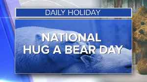 Daily Holiday - National hug a bear day [Video]