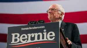 Elizabeth Warren And Bernie Sanders React To Bloomberg Joining Presidential Race [Video]