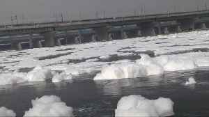 Toxic foam pollutes India's sacred Yamuna River [Video]