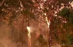 News video: Australian bushfires kill three, destroy at least 150 homes