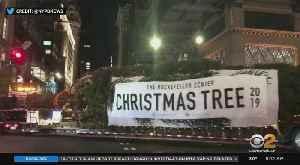 Rockefeller Center Christmas Tree Arrives In NYC [Video]