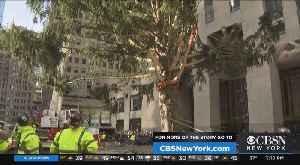 Rockefeller Center Christmas Tree Arrives [Video]