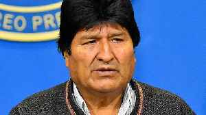 News video: Bolivia's Morales calls for new elections after OAS audit