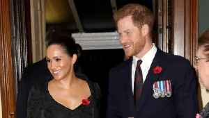 The Duke and Duchess of Sussex Pay Tribute to the Fallen On Their Instagram Page [Video]
