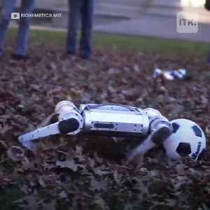 Cheetah robots play soccer in new MIT video [Video]