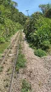 Serra Verde Express: Train ride from Curitiba to Morretes, Brazil [Video]