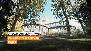 Dreamy Autumn Travel: Madrid's nearly 400-year-old park [Video]