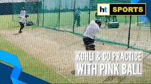 India vs Bangladesh: Kohli & co train with pink balls to prepare for Day/Night Test [Video]