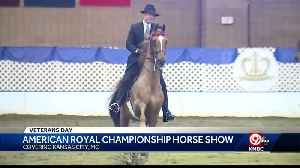 American Royal Championship Horse Show held in KCMO [Video]